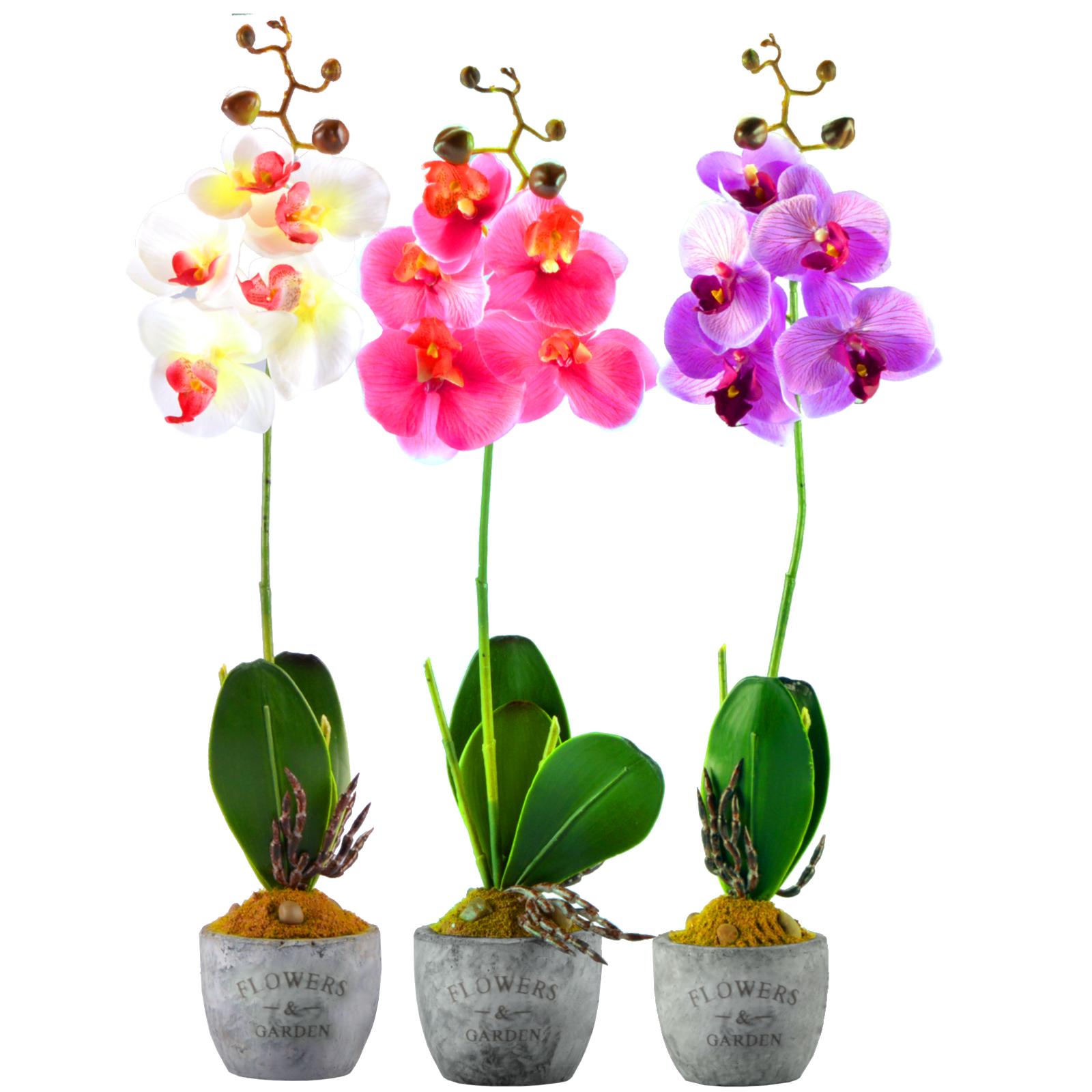 flowers 3 farben orchidee k nstlich orchidee im topf kunstblume blume blumentopf ebay. Black Bedroom Furniture Sets. Home Design Ideas